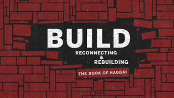 Build: Reconnetcing & Rebuilding